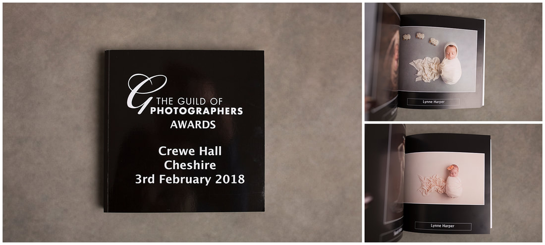 Guild of Photographers Image of the Year Book 2017