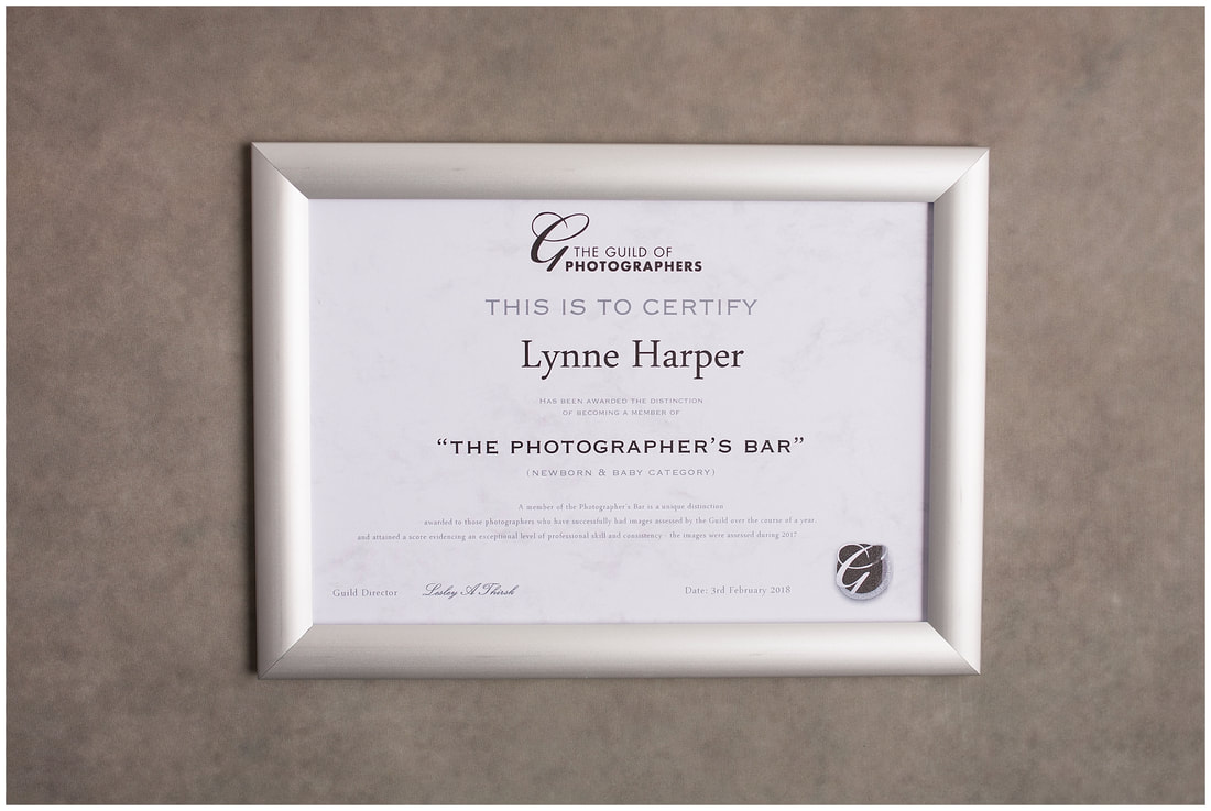 Lynne Harper Photographer's Bar certificate